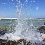 Orca Dive Club Coral Garden Safaga, Tauchen in Ägypten, Safaga, Tauchen im Roten Meer