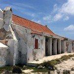 Yellow Slave, Tauchen auf Bonaire, Tauchrevier Deutschland auf Reisen